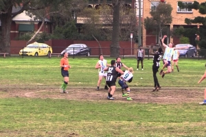 Collingwood Knights v Bendigo Victory